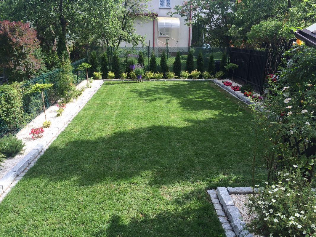 trawniki-nasadzenia-09.jpg
